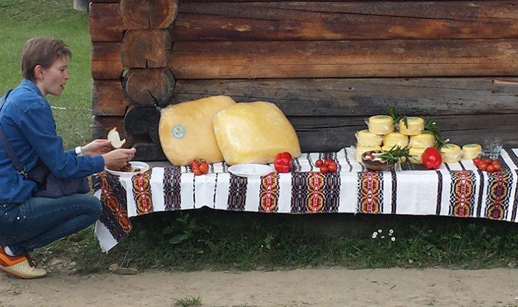Lactate Hora Bucovinei