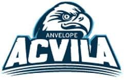 Logo Anvelope Acvila