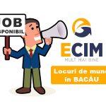 Locuri de muncă în Bacău, la un click distanţă