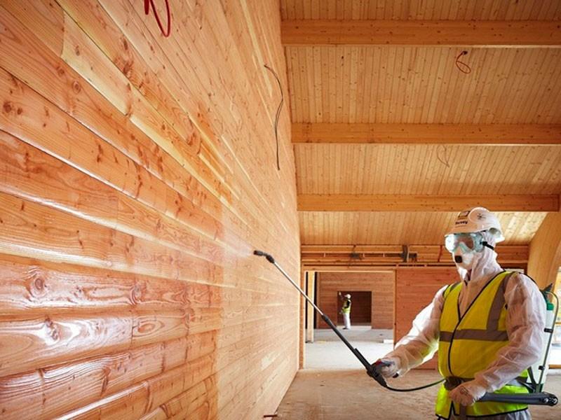 ignifugare lemn