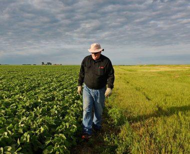 Cum-pregatesti-pamantul-pentru-culturile-agricole-din-primavara