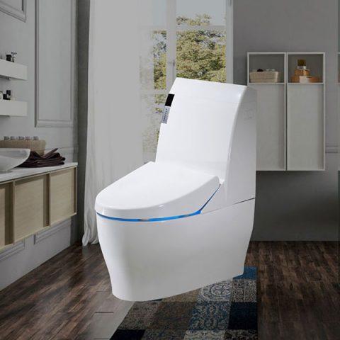 WC-de-lux