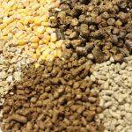Furajele EVIALIS – furaje echilibrate și consecvente pentru animalele tale