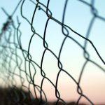 Garduri construite rapid cu plasă împletită